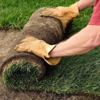 Comprar o produto de Plantio de Grama em Casa, Móveis e Decoração pela empresa HG Clean - Jardim e Piscina em Atibaia, SP por Solutudo