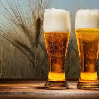 Comprar o produto de Cervejas em Bebidas pela empresa Quintal do Gui em Atibaia, SP por Solutudo
