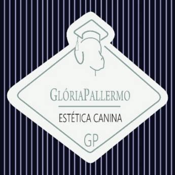 Comprar o produto de GP ESTÉTICA CANINA em Cursos em Jundiaí, SP por Solutudo