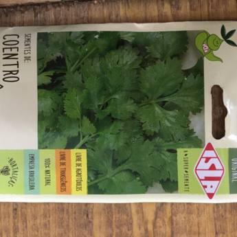 Comprar o produto de semente coentro português  em A Classificar em Botucatu, SP por Solutudo