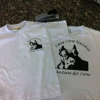 Comprar o produto de Camisetas Personalizadas em Variedades em Atibaia, SP por Solutudo