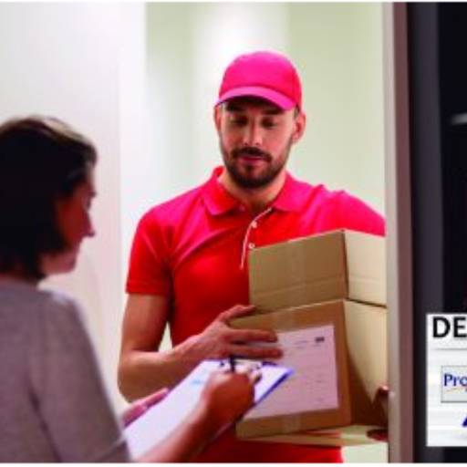 Delivery por Prosis Prime