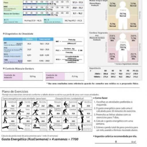 modelo bioimpedancia
