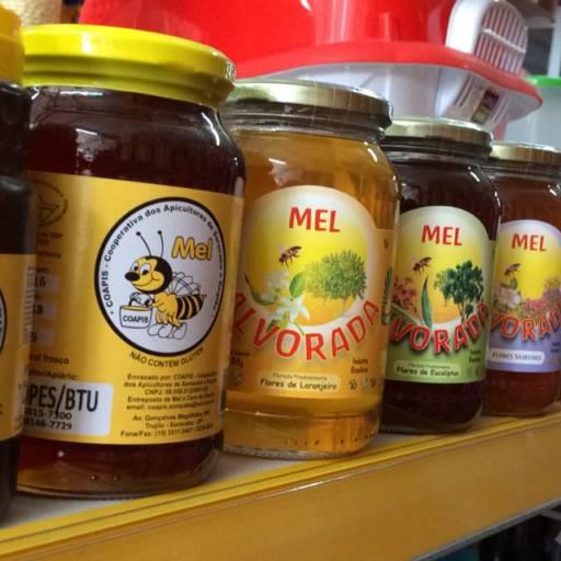 Comprar o produto de Mel de varias floradas e tamanhos em A Classificar pela empresa Rancho Pantaneiro Casa Agropecuária em Botucatu, SP por Solutudo