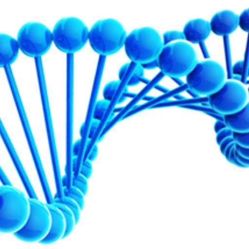 Comprar o produto de DNA em Saúde pela empresa Bioclínica Análises Clínicas em Jundiaí, SP por Solutudo