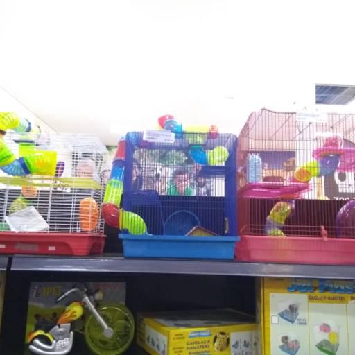 Comprar o produto de Gaiola de Hamster em Gaiolas para Roedores pela empresa Família Pet - Loja 1 em Birigui, SP por Solutudo