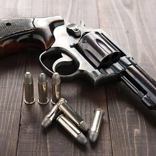 Comprar o produto de Certificado de Registro de posse de arma de fogo (CR) em Outros Serviços pela empresa Souza Vigilância em Atibaia, SP por Solutudo