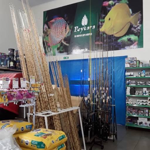 Comprar o produto de Vara para pesca em Outros pela empresa Flor da Terra em Birigui, SP por Solutudo