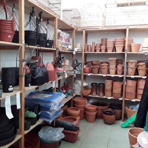 Comprar o produto de Vaso para plantas em Vasos para Flores pela empresa Flor da Terra em Birigui, SP por Solutudo