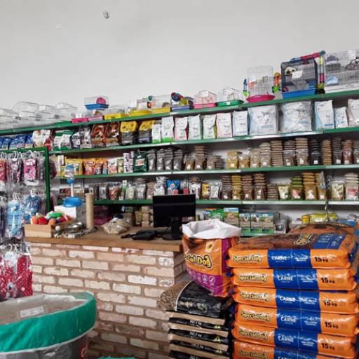 Comprar o produto de Produtos para pet em geral em Pet Shop pela empresa Flor da Terra em Birigui, SP por Solutudo