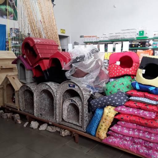 Comprar o produto de Casinhas para Cães e Gatos em Camas, Caixas e Casas pela empresa Flor da Terra em Birigui, SP por Solutudo