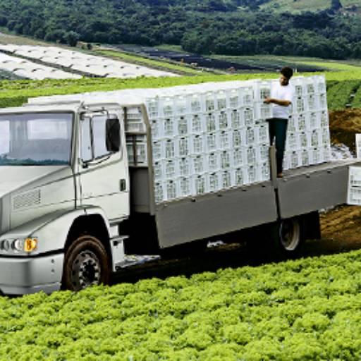 Consórcios de caminhões por Consórcio Lyscar