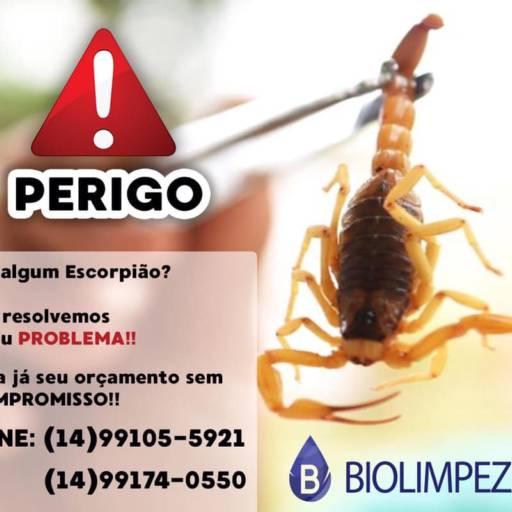 Comprar o produto de Dedetização de Pragas Urbanas em A Classificar pela empresa Biolimpeza Botucatu em Botucatu, SP por Solutudo