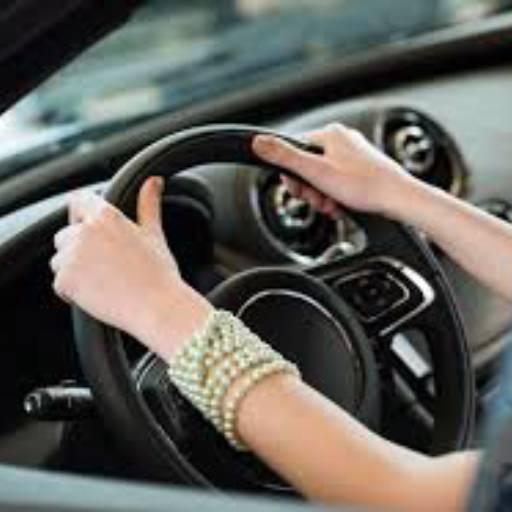 Motorista particular só para mulheres por Daniely Dias - Motorista particular para mulheres