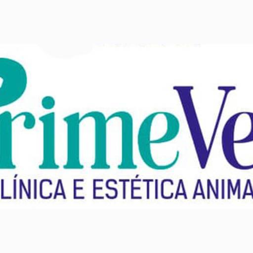 Banho e Tosa e um Charmoso Ofurô por PrimeVet Clínica e Estética Animal