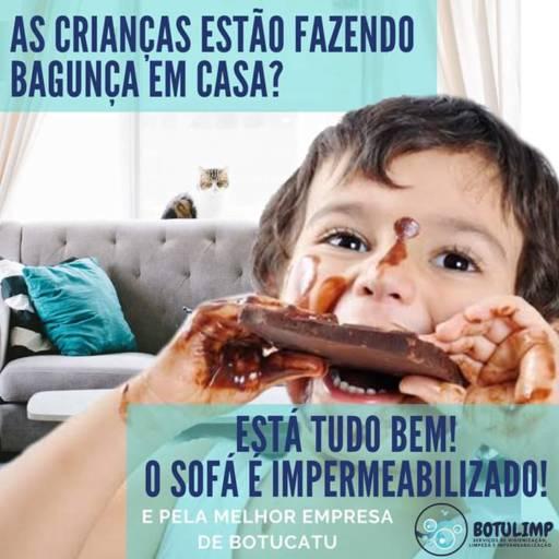 Comprar o produto de Sofá Impermeabilizado em Outros pela empresa Botulimp  em Botucatu, SP por Solutudo