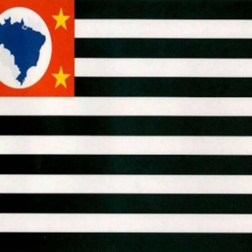 Bandeira do Estado de São Paulo por Jairo Jaime Bandeiras e Flâmulas