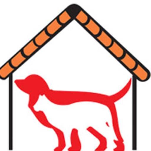 Comprar o produto de Raio-x  em Veterinário pela empresa Help Dogs Clínica Veterinária em Botucatu, SP por Solutudo
