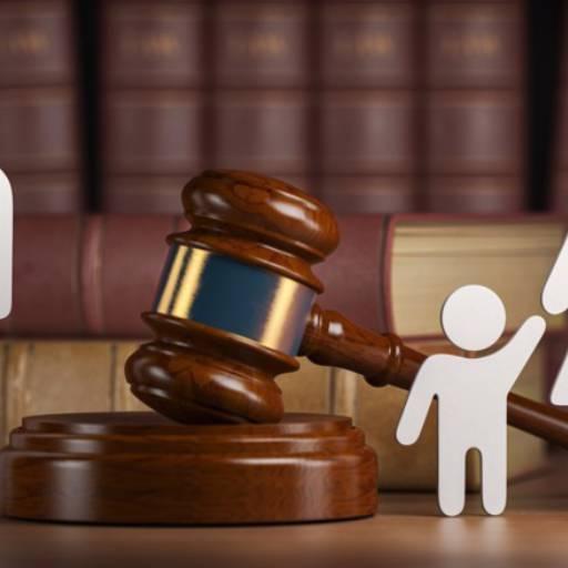 Direito de família e sucessões  por Acácia Gardênia Santos Lelis