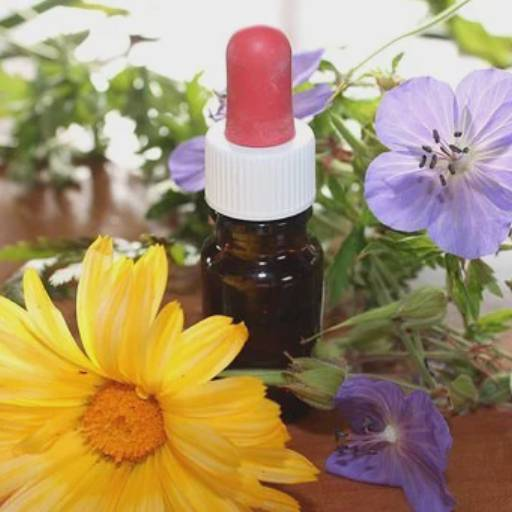 Homeopatia por Clínica do Bairro