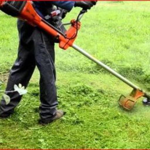 Roçagem  por Pereira Limpeza de Terrenos em Geral