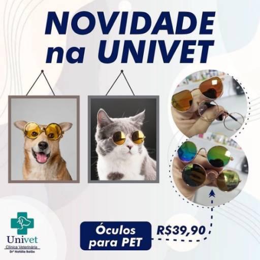 Óculos Pet por Univet - Clínica Veterinária e Pet Shop