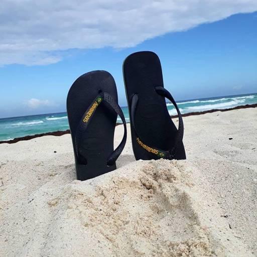 Chinelos Havaianas por Lojas Conceito Confecções e Calçados - Vestindo e Calçando Toda a Família