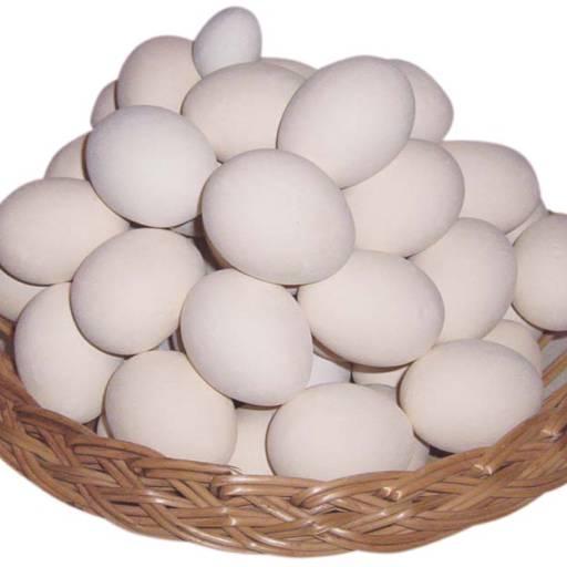 Comprar a oferta de Cartela com 30 ovos extra grande em Alimentação Saudável pela empresa Atacadão dos Ovos Botucatu em Botucatu, SP por Solutudo