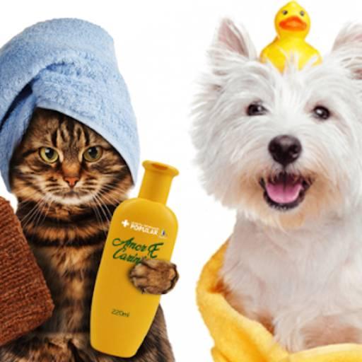 banho e tosa por Univet - Clínica Veterinária e Pet Shop