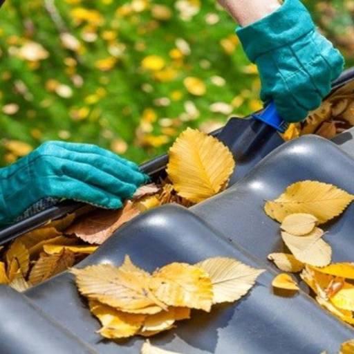 Comprar o produto de Limpeza de Calhas em Limpeza pela empresa HG Clean - Jardim e Piscina em Atibaia, SP por Solutudo